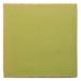 Neon-Green-B038